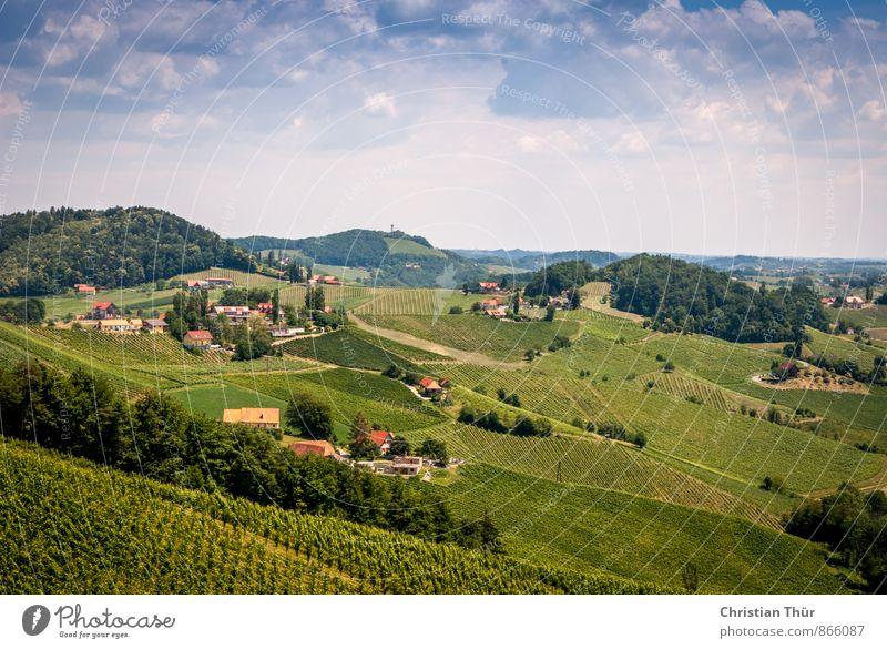 Gamlitz / Südsteiermark Natur blau Pflanze grün Sommer Baum Erholung rot Landschaft Wolken Umwelt Wiese Gras Sport außergewöhnlich Freizeit & Hobby