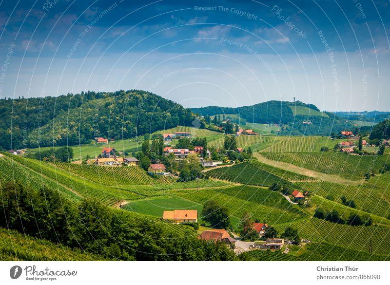 Gamlitz / Südsteiermark harmonisch Wohlgefühl Zufriedenheit Sinnesorgane Erholung ruhig Meditation Freizeit & Hobby Ferien & Urlaub & Reisen Tourismus Sommer
