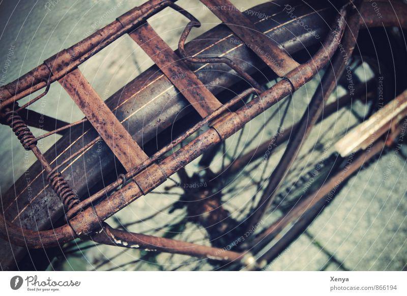 Design-Rost Fahrrad Metall retro braun Gepäckträger Straße alt Außenaufnahme Menschenleer Tag Schwache Tiefenschärfe