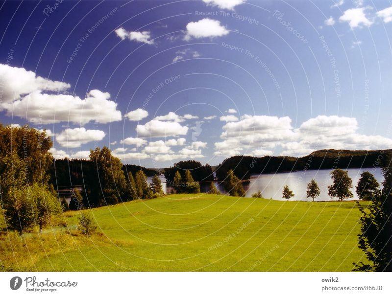 Dalsland, Westschweden Natur Himmel grün Pflanze ruhig Wolken Ferne Wald Erholung Wiese Gras Freiheit Landschaft Luft Umwelt groß