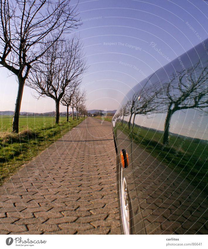 Bei sich selber klauen Fußweg Baumreihe fahren Kotflügel Spiegelbild Horizont Straßenbelag Beschleunigung Geschwindigkeit Verkehrsmittel Pannenhilfe Autopflege