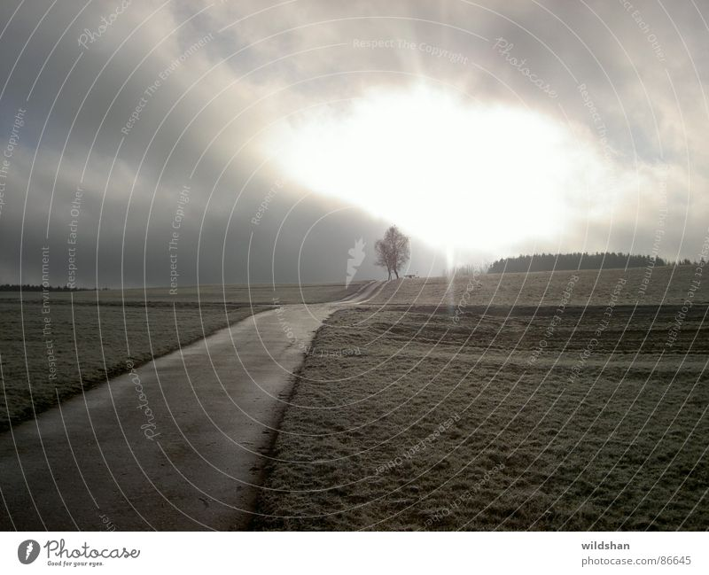 einsamkeit Einsamkeit Hoffnung Wolken Herbst Sonne Himmel Natur Der Weg