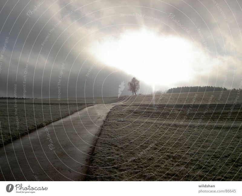 einsamkeit Natur Himmel Sonne Wolken Einsamkeit Herbst Hoffnung