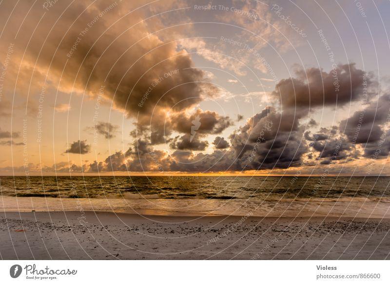 orange ... Natur Himmel Wolken Sonnenaufgang Sonnenuntergang Sommer Schönes Wetter Wellen Küste Strand Bucht Nordsee fantastisch Romantik Abenteuer Kitsch