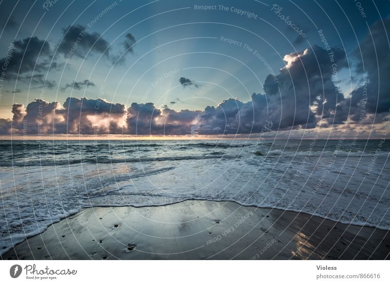 Feuchtigkeit | in Wellen Himmel Natur Ferien & Urlaub & Reisen Wasser Sommer Sonne Erholung Meer Wolken Strand Ferne Umwelt Küste Freiheit außergewöhnlich Sand