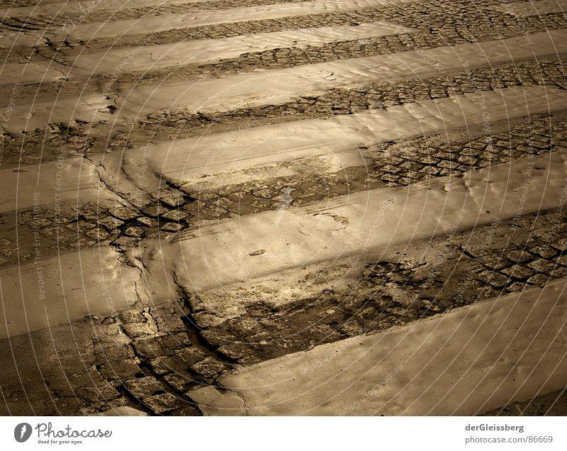 leuchtendes Zebra Seine Paris Zebrastreifen Fußgängerübergang kaputt gelb Straßenbelag grell Furche Verkehrswege Chatelet Fußschmerzen Wege & Pfade Stein