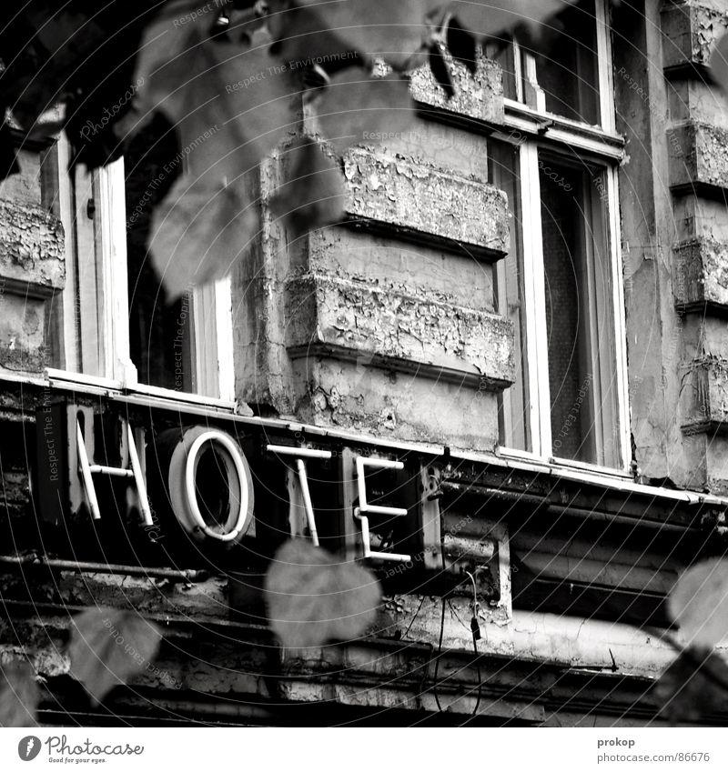 Zugige Unterkunft Blatt Fenster Berlin Fassade Schwarzweißfoto Schriftzeichen Baustelle Buchstaben Vergänglichkeit verfaulen verfallen Gastronomie Hotel