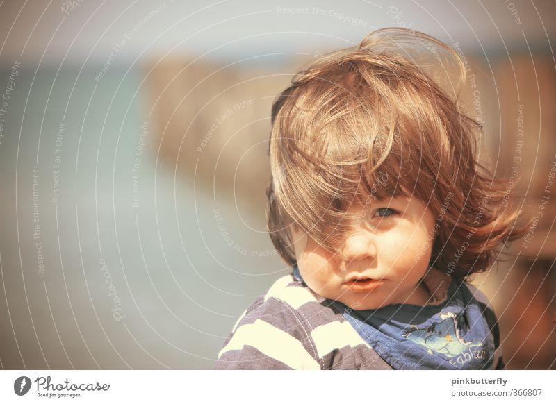 Vom Winde verweht... Mensch Natur schön Sommer Sonne Meer Landschaft Strand Gesicht Junge Haare & Frisuren Kopf maskulin Zufriedenheit beobachten niedlich