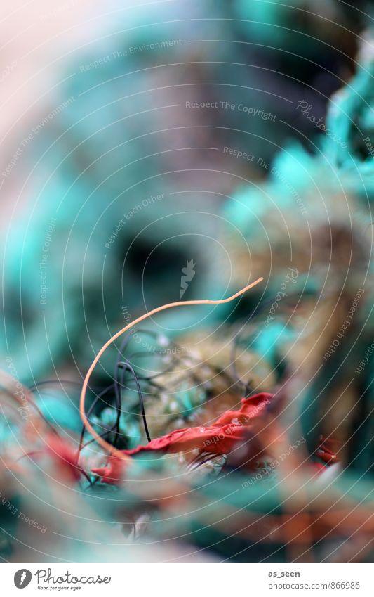 Strandgut || Ferien & Urlaub & Reisen Tourismus Ferne Meer Seil Umwelt Wasser Küste Schifffahrt Fischerboot Hafen Netz Netzwerk maritim nass braun rot türkis