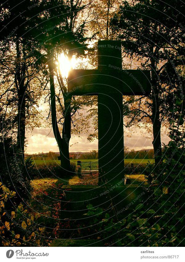 Wenn Du denkst es geht nicht mehr ... Sonne ruhig Herbst Gefühle Tod Denken Religion & Glaube Rücken Trauer Frieden Vertrauen Denkmal Christentum Meinung