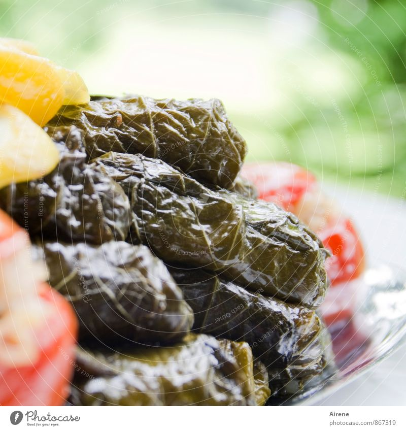 gefüllte Weinblätter grün rot gelb Essen Frucht genießen Ernährung Lebensfreude Gemüse lecker mediterran Picknick Tomate Salat Vegetarische Ernährung