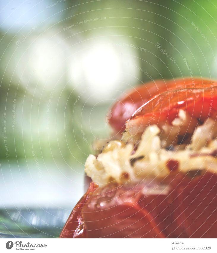 gefüllte Tomate grün weiß rot Essen Gesundheit Lebensmittel frisch genießen Ernährung Gemüse lecker Duft Bioprodukte mediterran Abendessen Picknick