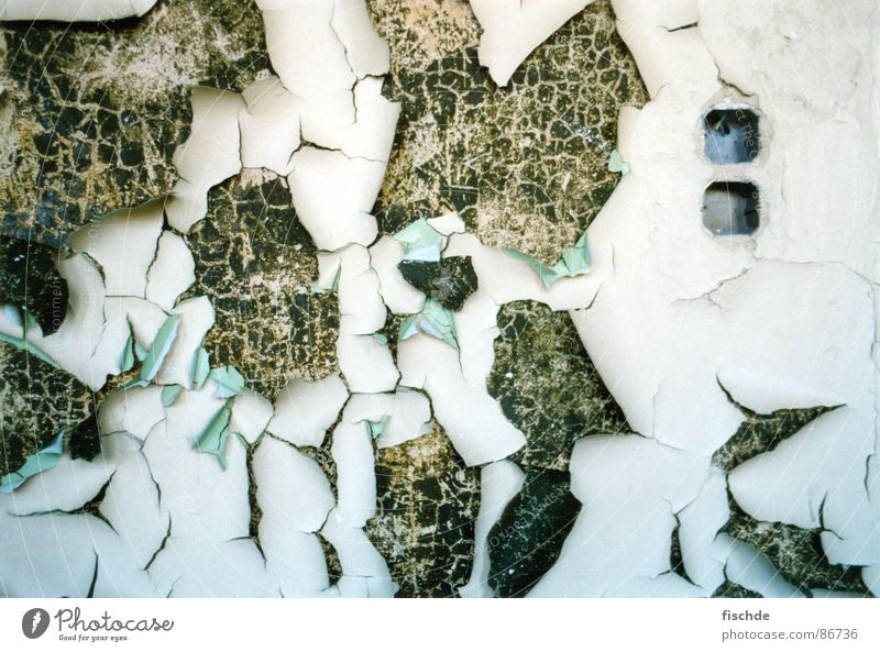 neuer anstrich wär nicht schlecht grün Einsamkeit Farbe Wand kaputt Niveau verfallen Tapete Verfall Loch Riss brechen Dose Anstreicher Steckdose