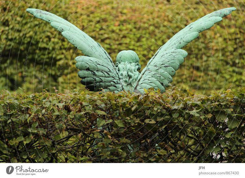 beflügelt Dekoration & Verzierung Engel Flügel Engelsflügel Statue Kupfer Hecke Grün Erinnerung Trauer Friedhof Tod Grab Rücksicht Hinterlassen Sorge Erbe