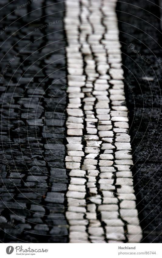 Pflasterordung Streifen Zebra Zebrastreifen Verlauf Unschärfe Zwischenraum Richtung Straße Ordnung Stein Ziel Wege & Pfade Linie aufwärts Pflastersteine