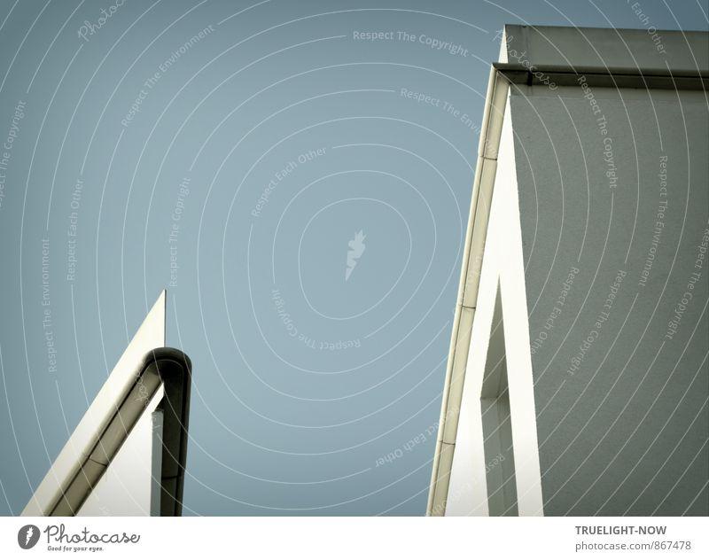 Statt Blümchen Fortschritt Zukunft Potsdam Stadt Haus Traumhaus Gebäude Architektur Mauer Wand Fassade Sehenswürdigkeit Stein Beton Metall ästhetisch