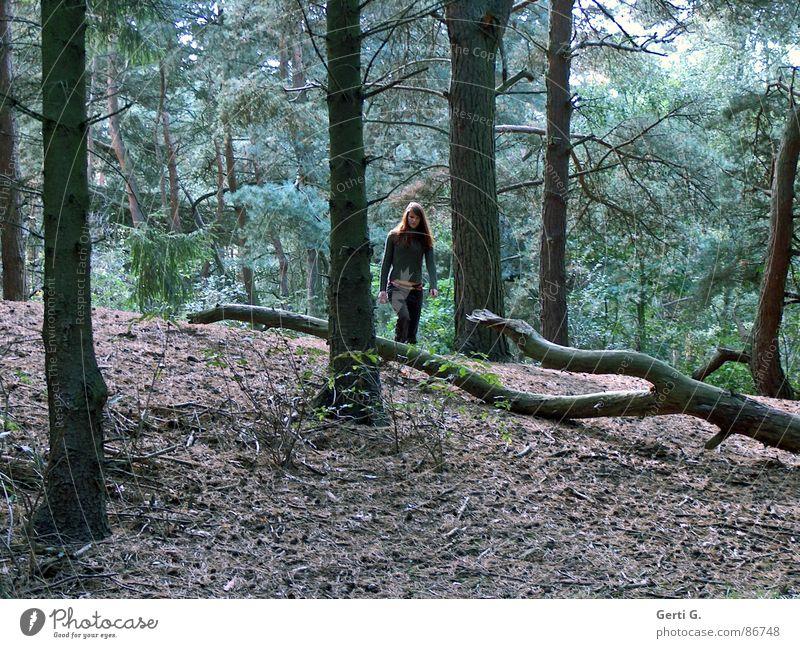 hi king Frau Natur grün Einsamkeit Wald braun wandern gehen Sträucher Spaziergang Ast Tanne Baumstamm langhaarig Waldlichtung Heide