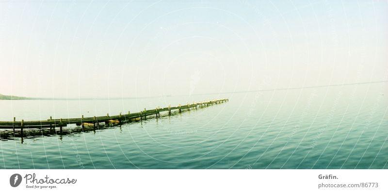 endlose Weite Natur Wasser Himmel Meer grün Holz See Vogel Wellen fliegen nass groß Horizont sitzen Unendlichkeit Steg