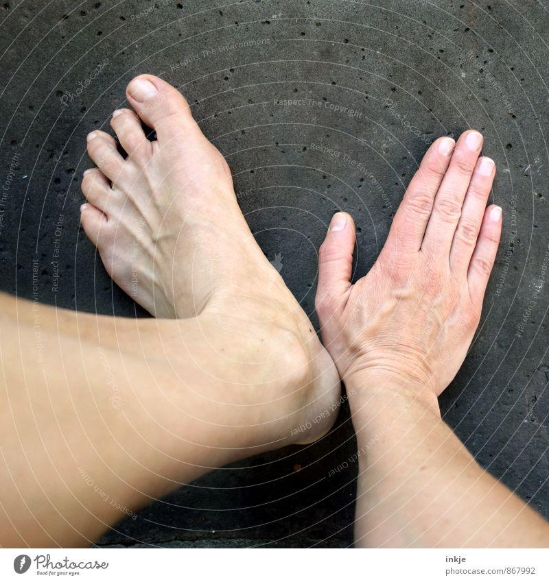 V Erwachsene Leben Hand Fuß 1 Mensch Bewegung Barfuß hand und fuß aufstützen nebeneinander Symbolismus Gebärdensprache Vor dunklem Hintergrund bleich