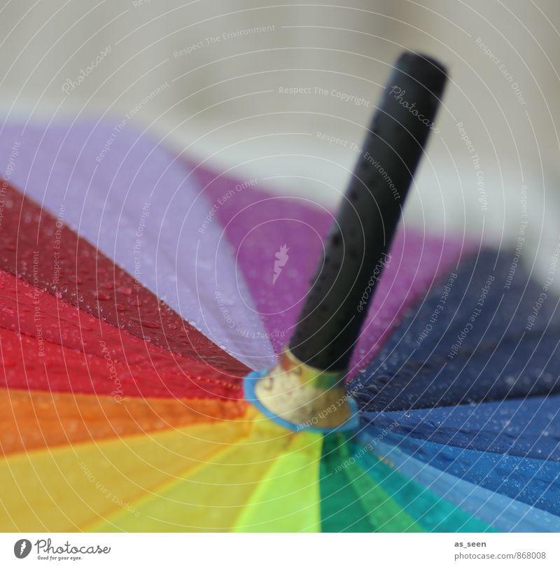 Regenschauer Lifestyle Design harmonisch Wasser Wassertropfen Klima Wetter Schönes Wetter schlechtes Wetter Regenschirm ästhetisch Freundlichkeit Fröhlichkeit