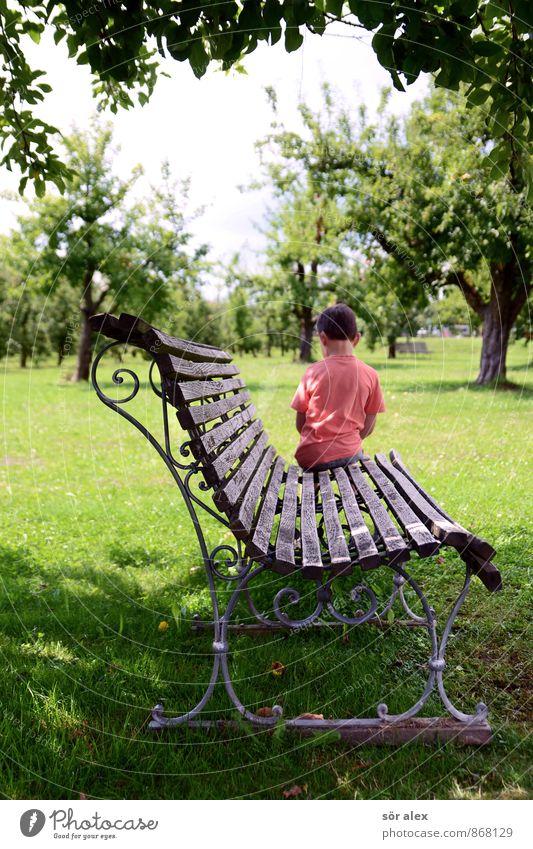 sitzengeblieben Kindererziehung Mensch Junge Kindheit Oberkörper Rücken 1 3-8 Jahre Natur Baum Gras Garten Park Bank Heimweh Fernweh Einsamkeit Erholung