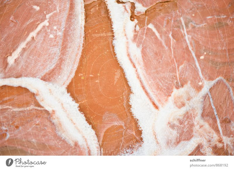 Steinreich Rechtschaffenheit Strukturen & Formen rot Oberfläche Oberflächenstruktur steinig Steinwand Steinplatten Steinbruch Steinboden Steingut Marmor