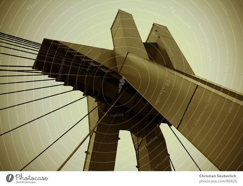 Pylonen Brücke Closeup Ludwigshafen Schlagwort seltsam braun Bild 41 Drahtseil Seil wunder der technik photocase Sepia wurde nun doch bestätigt