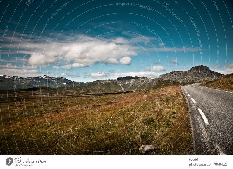Open road Ferien & Urlaub & Reisen Ausflug Ferne Freiheit Sommer Natur Landschaft Pflanze Himmel Wolken Horizont Sonne Schönes Wetter Gras Sträucher Moos