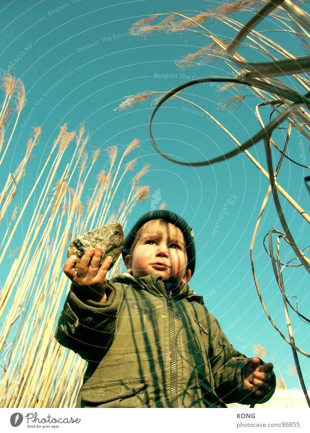 training für den 1. mai Kleinkind Porträt Parka Naturwuchs Nachkommen Freude steinewerfen Stein Mensch Himmel Riedgras Charakter Außenaufnahme Junge
