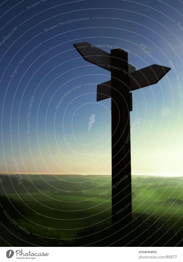 Wrong Direction Natur Himmel grün Pflanze Wald Wiese Holz Wege & Pfade Landschaft Umwelt Schilder & Markierungen Horizont Sträucher Klarheit Pfeil Richtung