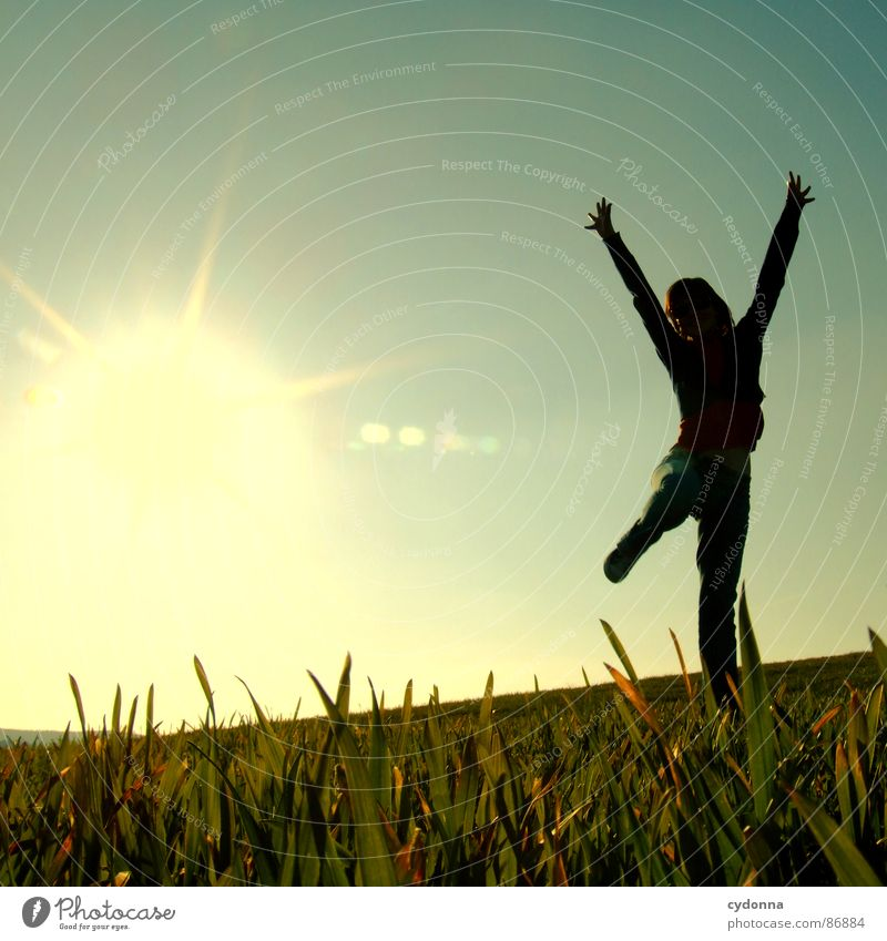 Hoch hinaus III hüpfen Frühling Wiese Gras grün Stil Sonnenuntergang Körperhaltung Halm Froschperspektive Frau Sonnenstrahlen Gefühle Mensch fliegen Freude