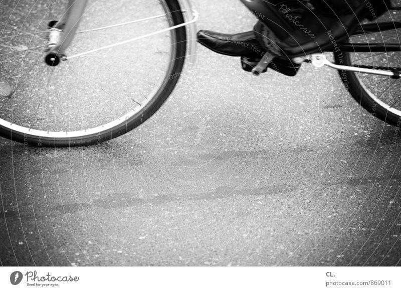 radeln Mensch Leben Straße Bewegung Wege & Pfade Sport Gesundheit Freizeit & Hobby Verkehr Fahrrad Fitness Fahrradfahren sportlich Verkehrswege unterwegs