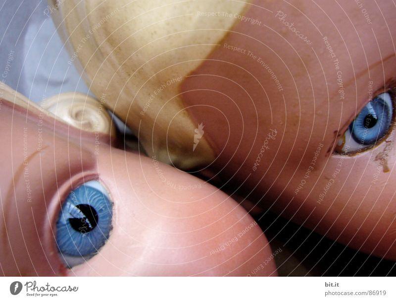 Auge um Auge alt schön Gesicht Spielen Junge Kopf Denken Horizont Kindheit Mund frei Nase verrückt Perspektive Wandel & Veränderung