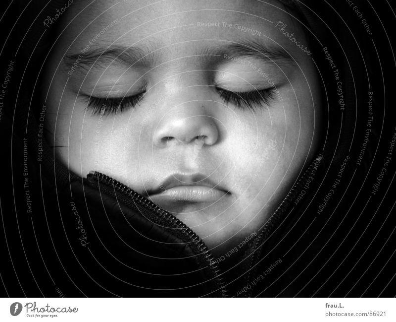 Noah schläft Mensch Kind schön Gesicht ruhig Glück träumen Baby Zufriedenheit schlafen Vertrauen Kleinkind Geborgenheit Porträt Traumprinz