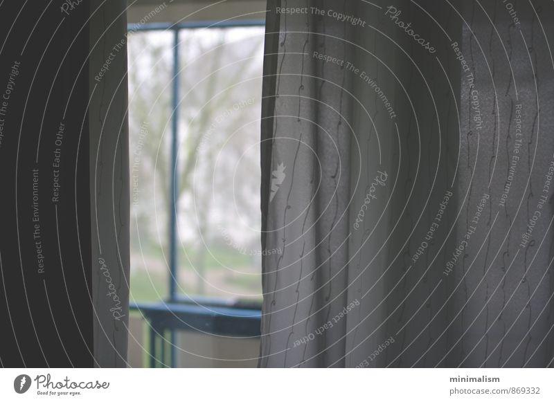 Ruhe Haus Garten Fenster Gefühle Stimmung Vorsicht Gelassenheit geduldig ruhig Zufriedenheit Farbfoto Innenaufnahme Menschenleer Textfreiraum links