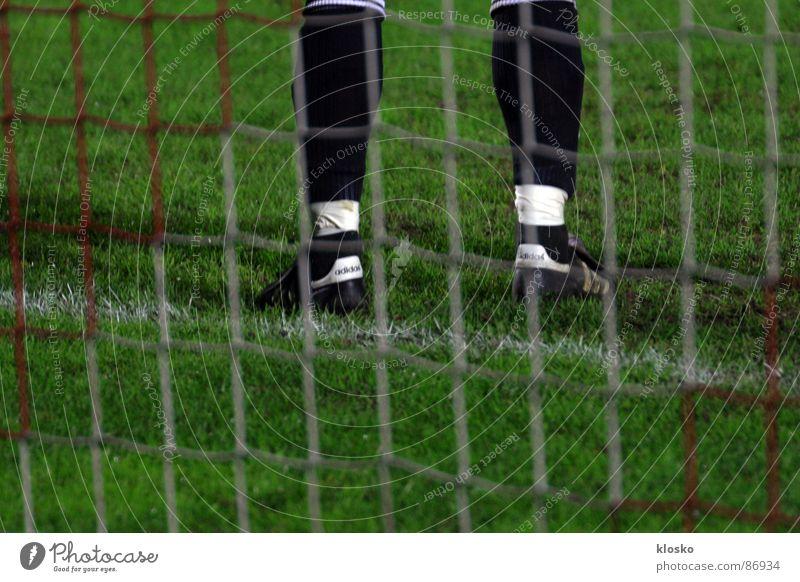 Torwart grün Sport Spielen Gras Beine Junger Mann Fußball stehen rund Rasen Spielfeld Tor Sport-Training Turnschuh Sportveranstaltung Leder