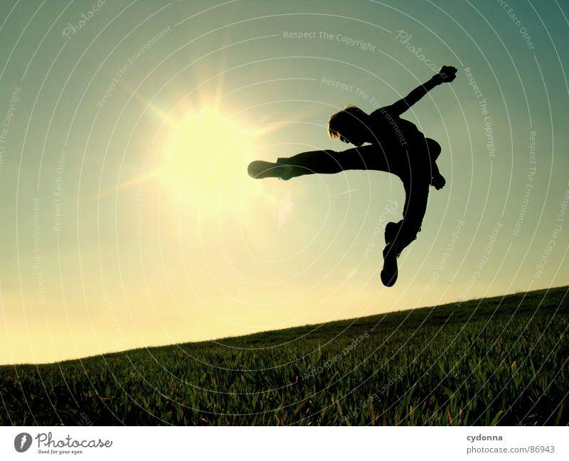 The Bruce Lee Story II hüpfen Wiese Gras grün Stil Sonnenuntergang Körperhaltung Halm Froschperspektive Sonnenstrahlen Kick Fußtritt Kampfsport Gefühle Mensch