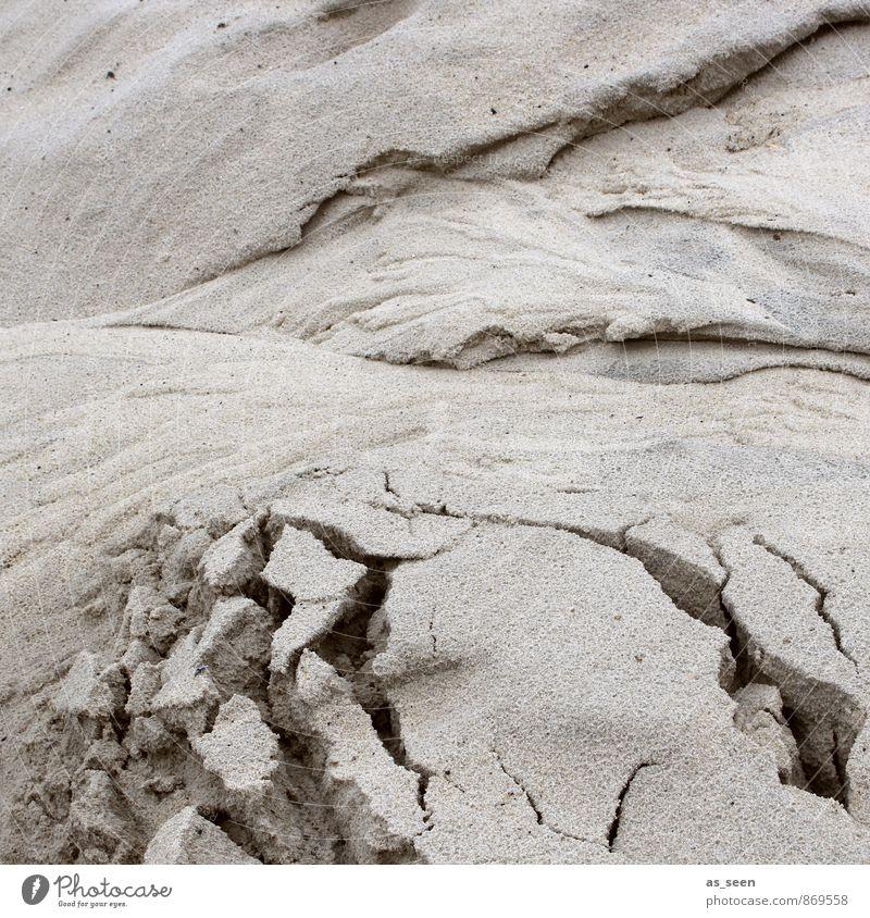 Verwerfungen Umwelt Natur Landschaft Erde Sand Küste Strand Nordsee Ostsee Insel Riss alt ästhetisch außergewöhnlich braun authentisch beweglich Leben verstört