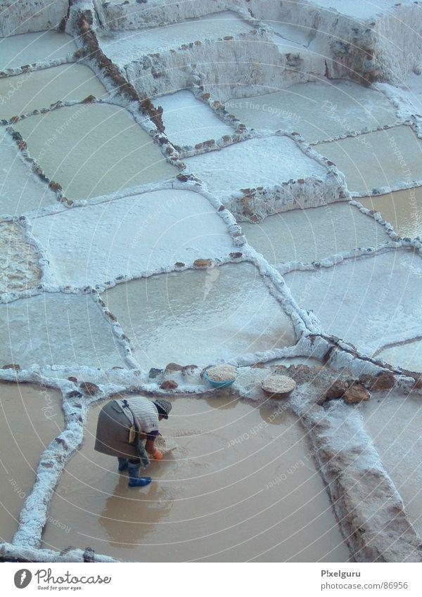 Salt Frau Korb Peru schöpfen Südamerika abschöpfen wei terassenförmig salzterasse Salz Arbeit & Erwerbstätigkeit Becken Wasser salt water