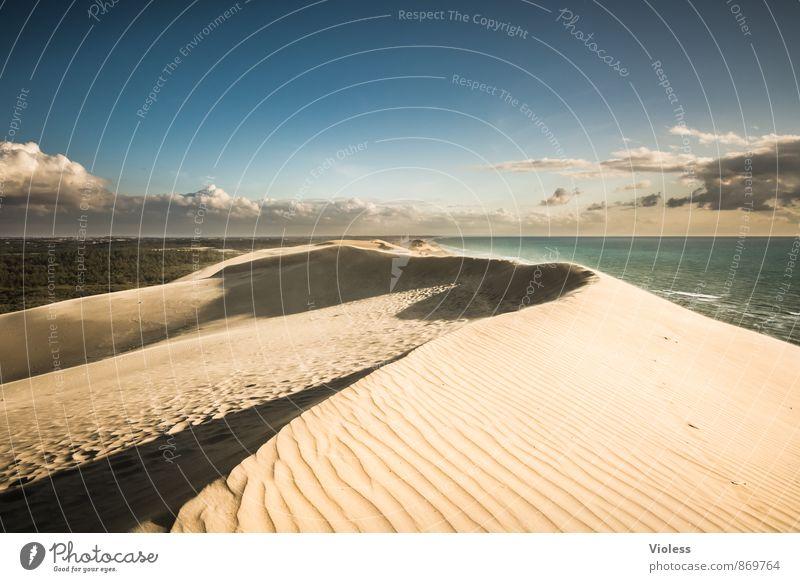 wildes DK Natur Ferien & Urlaub & Reisen Sommer Sonne Erholung Meer Landschaft Umwelt Sand Wellen Tourismus Insel Ausflug Schönes Wetter Urelemente Abenteuer
