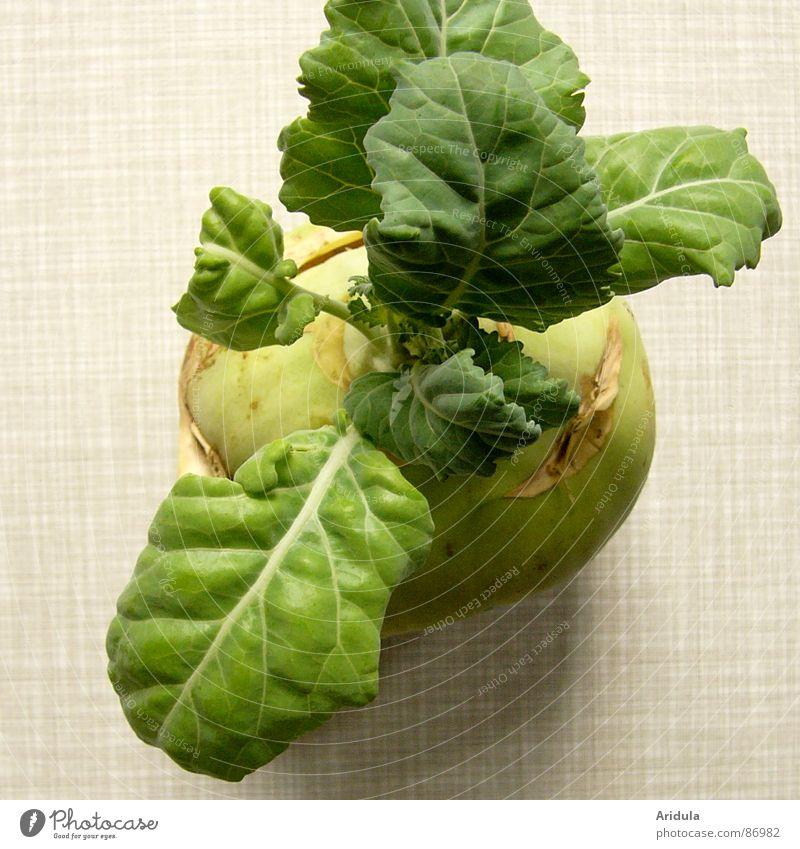kohlrabi no.1 grün Ernährung Leben Gesundheit Tisch Küche Gemüse Vegetarische Ernährung pflanzlich Kohl Kohlrabi