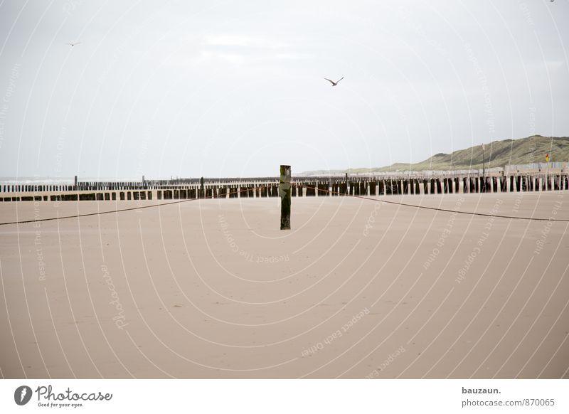 nah. harmonisch Zufriedenheit Erholung ruhig Ferien & Urlaub & Reisen Tourismus Ausflug Ferne Freiheit Sommer Strand Meer Wellen Umwelt Natur Landschaft Sand