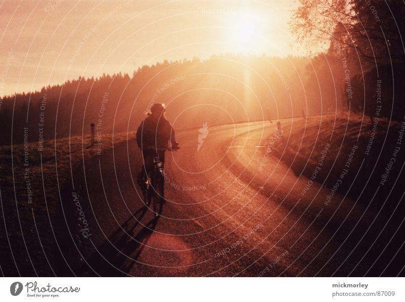 sonnenrad Sonne rot gelb Straße Wald Landschaft Fahrrad orange Ausflug Freizeit & Hobby Fahrradfahren BMX