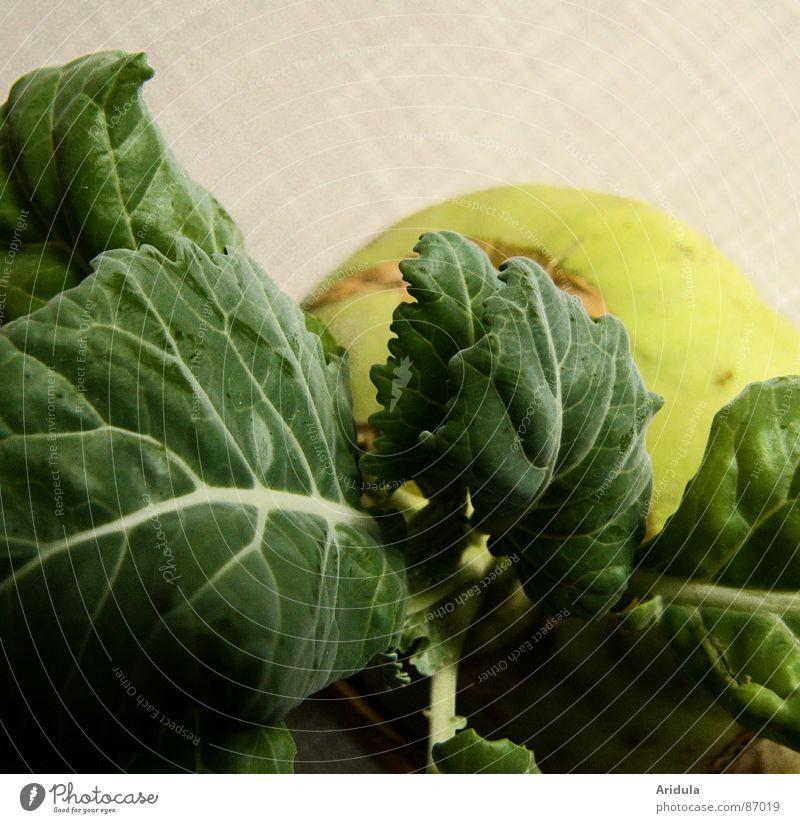 kohlrabi no.2 grün Ernährung Leben Gesundheit Tisch rund Küche Gemüse Vegetarische Ernährung pflanzlich Kohlrabi
