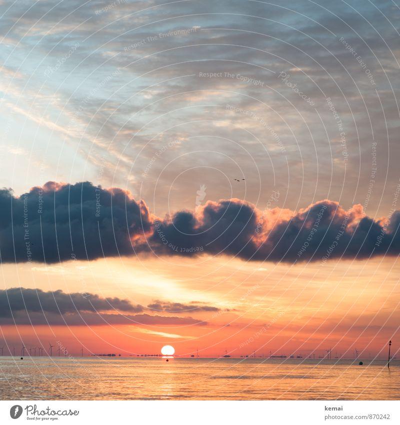 Morgenruhe Umwelt Natur Landschaft Wasser Himmel Wolken Sonne Sonnenaufgang Sonnenuntergang Sonnenlicht Sommer Schönes Wetter Wellen Küste Nordsee Meer schön