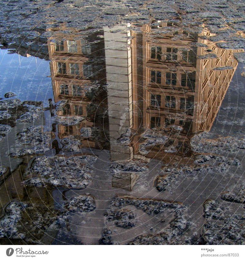 pfuetze berlin Pfütze Haus auf dem Kopf Kopfstand Alexanderplatz Platz Mitte Straßenbelag verrückt Spiegelbild Berlin madostyle Grober Drachenkopf Wasser