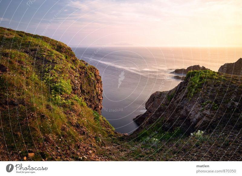 Meer.Aussicht Himmel blau Pflanze grün weiß Sommer Blume Landschaft Wolken Umwelt Berge u. Gebirge Gras Küste Blüte braun