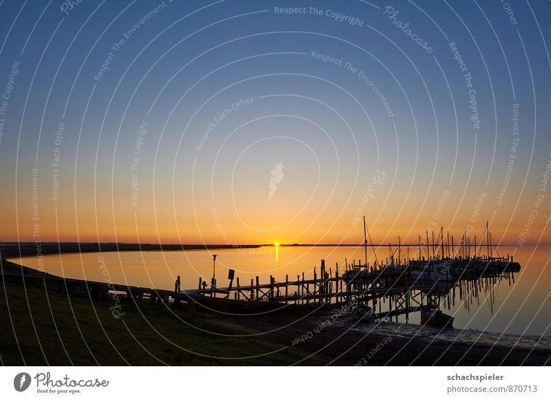 Hafen Rantum Wasser Wolkenloser Himmel Sonnenaufgang Sonnenuntergang Sommer Schönes Wetter Küste Nordsee Schifffahrt Segelboot Segelschiff Jachthafen Einsamkeit