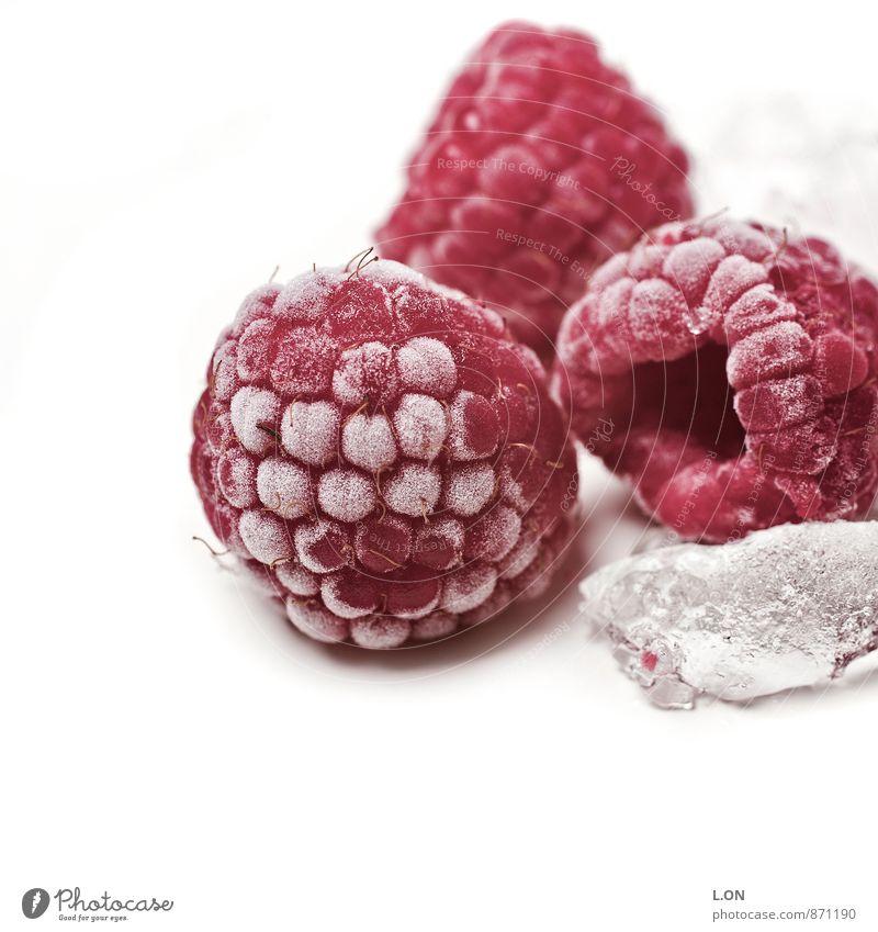 Himbeere eisgekühlt Lebensmittel Frucht Himbeeren Himbeereis Eiswürfel kalt gefroren Ernährung Pflanze Gesundheit rot Farbfoto Studioaufnahme Menschenleer
