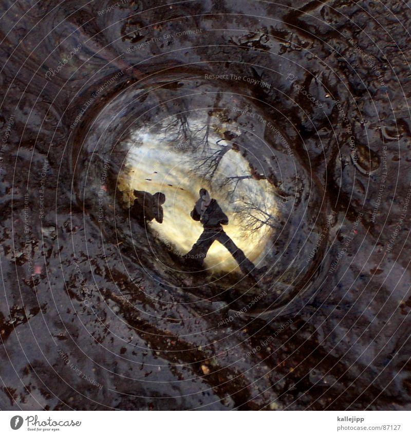 world in my eyes Mensch Himmel Tier Ferne Spielen Luft Erde gold glänzend dreckig einzigartig Klarheit nah Spiegel Aussicht Blase